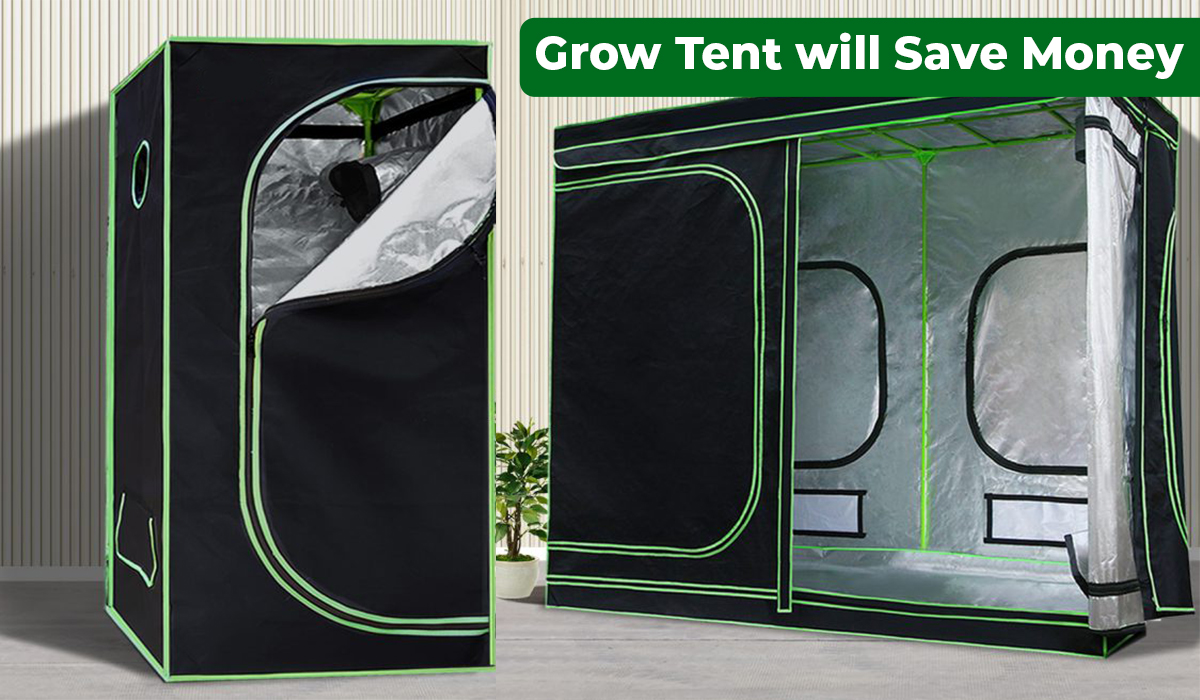 Grow tent will save money